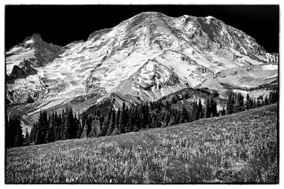 Photograph - Mount Rainier Vii by David Patterson