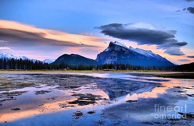 Photograph - Mount Rundle In The Evening by Tara Turner