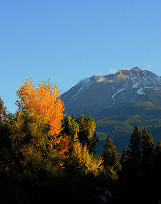 Mount Shasta Fall Art Print by Lynn Bawden