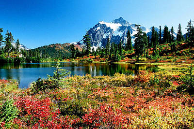 Photograph - Mount Shuksan by Frank Townsley