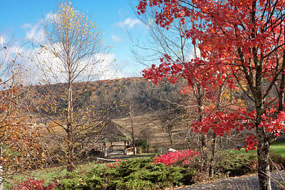 Photograph - Mountain Lake In Fall 2011 by James Woody