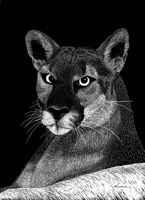 Art Print featuring the mixed media Mountain Lion by Kume Bryant