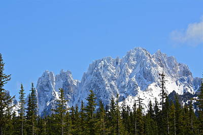 Photograph - Mountain Majesty by Diana Hatcher