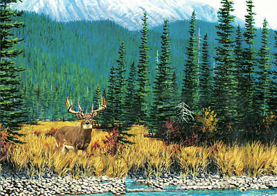 Digital Art - Mountain Mule Deer by Walter Colvin