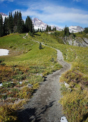 Photograph - Mountain Path by Lynn Wohlers
