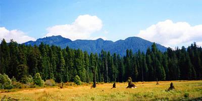 Photograph - Mountain Scene by C Sitton