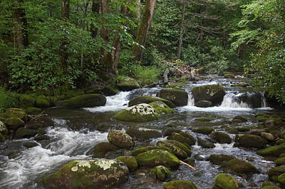 Wall Art - Photograph - Mountain Stream In The Smokies by Megan Cohen