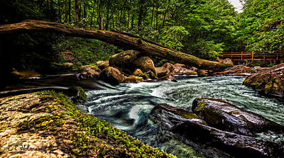 Mountain Stream Iv Art Print by Christopher Holmes
