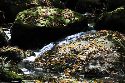 Photograph - Mountain Stream by Peter DeFina