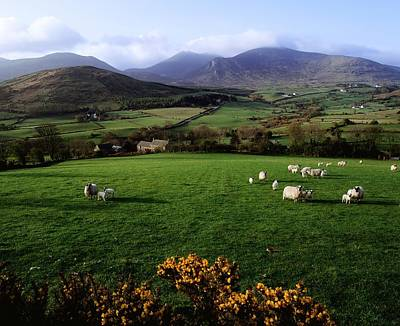 Mourne Mountains From Trassey Road, Co Art Print