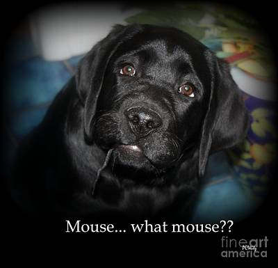 Mouse---what Mouse Art Print