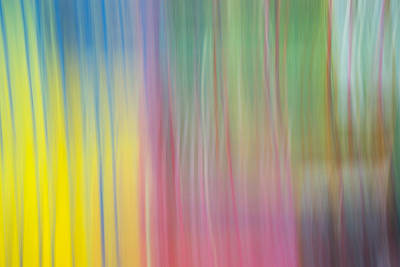 Photograph - Moving Colors by Susan Stone