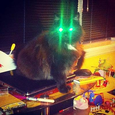 Scifi Photograph - Mr Worf! Ready The Lasers!!! #lol by Andy Brown