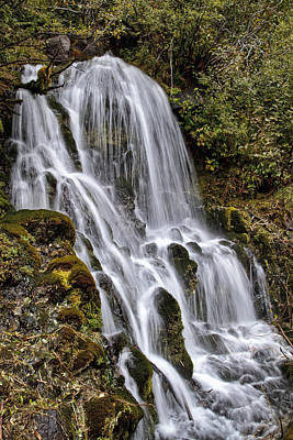 Photograph - Mt Hood Cascade by Wes and Dotty Weber