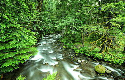 Photograph - Mt. Hood Creek by Matt Hanson