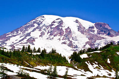 Photograph - Mt. Rainier - View From Paradise  by David Patterson