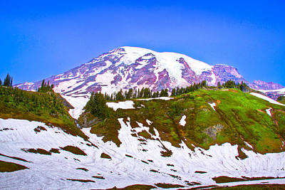 Photograph - Mt. Rainier Iv by David Patterson
