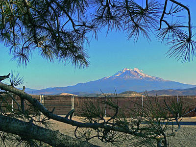 Mt Shasta At Weed  Art Print by Pamela Patch