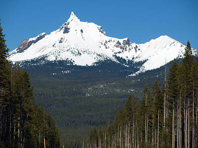 Photograph - Mt. Thielson by Teri Schuster