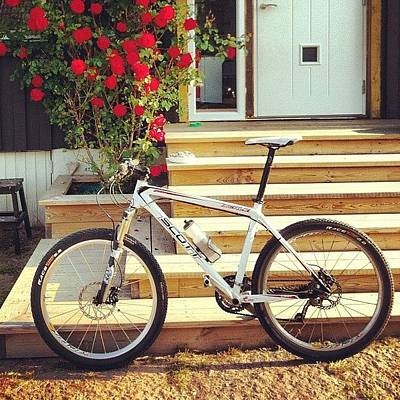Mtb Photograph - Mtb With Roses by Mikael Andersson
