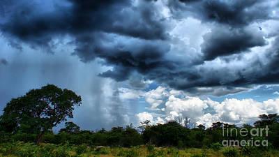 Photograph - Much Wanted Rain by Mareko Marciniak