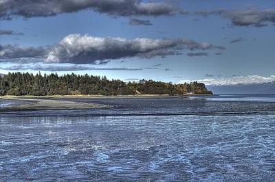 Art Print featuring the photograph Mud Bay  by Michele Cornelius