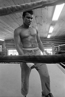 Photograph - Muhammad Ali Ponders His Future by Jan W Faul
