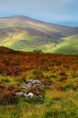 Photograph - Multicolored Hills Of Wicklow. Ireland by Jenny Rainbow