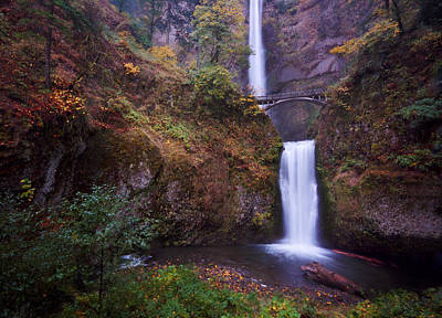 Photograph - Multnomah Falls by Matt Hanson