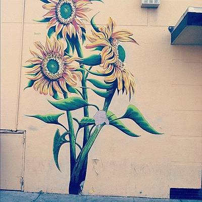 Sunflowers Wall Art - Photograph - Mural. #fresno #towerdistrict by Allison Faulkner