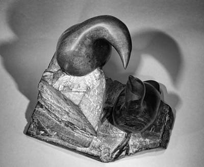 Sculpture - Murres From Above by Jean Scott