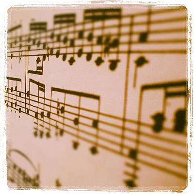 Mozart Photograph - Music! Yeah! Go Mozart! by Zachary Dominguez