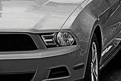 Photograph - Mustang 002 by Elizabeth  Doran
