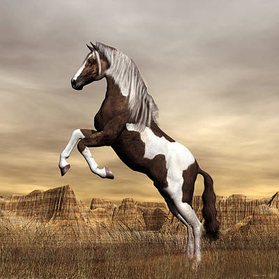 Digital Art - Mustang by Walter Colvin