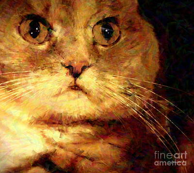 Photograph - Muted Calico Close-up - A Feline Abstraction by Christine S Zipps