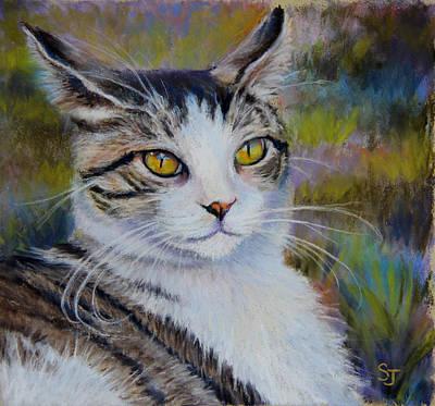 Pastel - My Beautiful Cat by Susan Jenkins