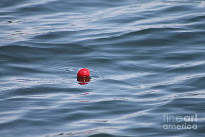 Photograph - My Bobber by Pamela Walrath