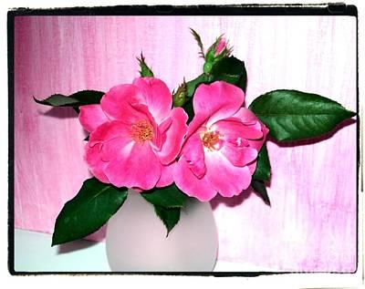 Wrap Digital Art - My Favorite Roses by Marsha Heiken