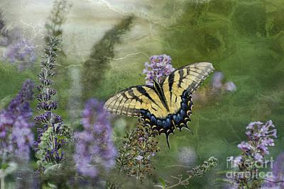 Photograph - My Mothers Garden - D007041 by Daniel Dempster