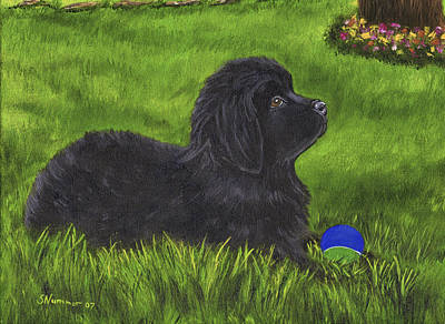 Newfoundland Puppy Painting - My New Ball by Sharon Nummer