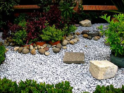 Photograph - My Rock Garden by Robert Margetts
