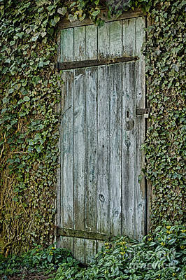 Photograph - Mysterious Doorway by Vicki DeVico