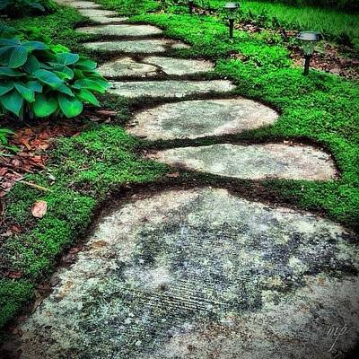 Trail Wall Art - Photograph - Mystic Path by Maury Page