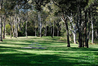 Photograph - Myuna Bay Picnic Area by Fran Woods
