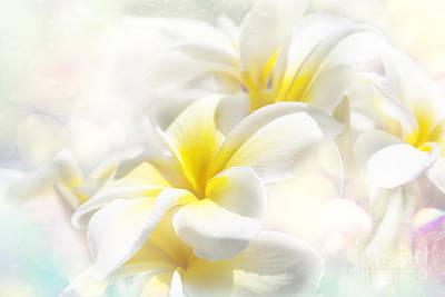 Photograph - Na Lei Pua Melia Aloha E Ko Lele - Yellow Tropical Plumeria Maui by Sharon Mau
