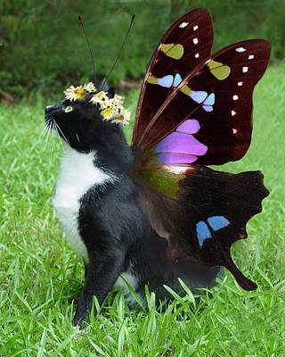 Cat And Butterfly Digital Art - Nancy's Spring Wings by Kathleen Horner