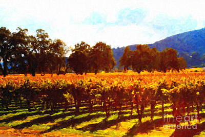 Napa Digital Art - Napa Valley Vineyard In Autumn Colors 2 by Wingsdomain Art and Photography