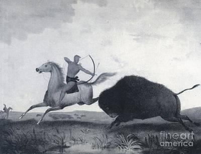 Native American Indian Buffalo Hunting Art Print by Photo Researchers