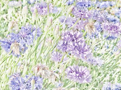 Natural Beauty Art Print by Bonnie Bruno