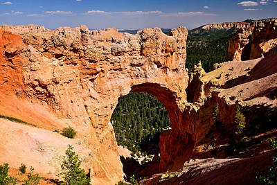 Photograph - Natural Bridge Bryce Canyon by Greg Norrell